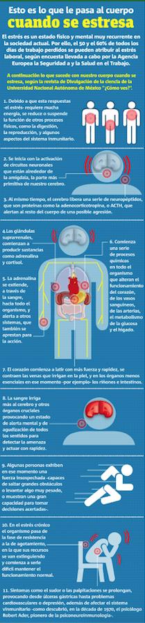cuerpo y estrés.png